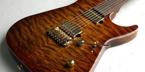 Thorn Guitars
