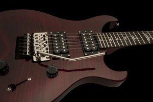 PRS SE Floyd Custom 24