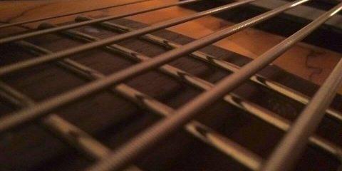 LTD 6 string